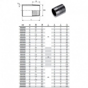 """Tronchetto nero ø1.1/4""""M L.100 ACC. 600114100 - In acciaio nero filettati"""