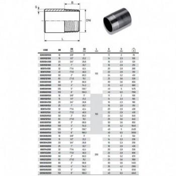 """Tronchetto nero ø2""""M L.100 ACC. 600200100 - In acciaio nero filettati"""