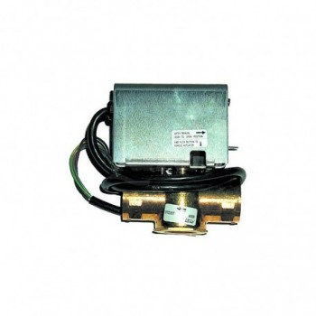 MOTORE SYNCRON 220V 50Hz TCG00000R02275